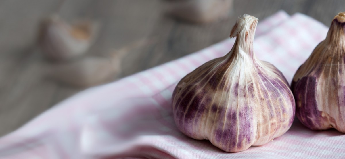 Eat Garlic Responsibly