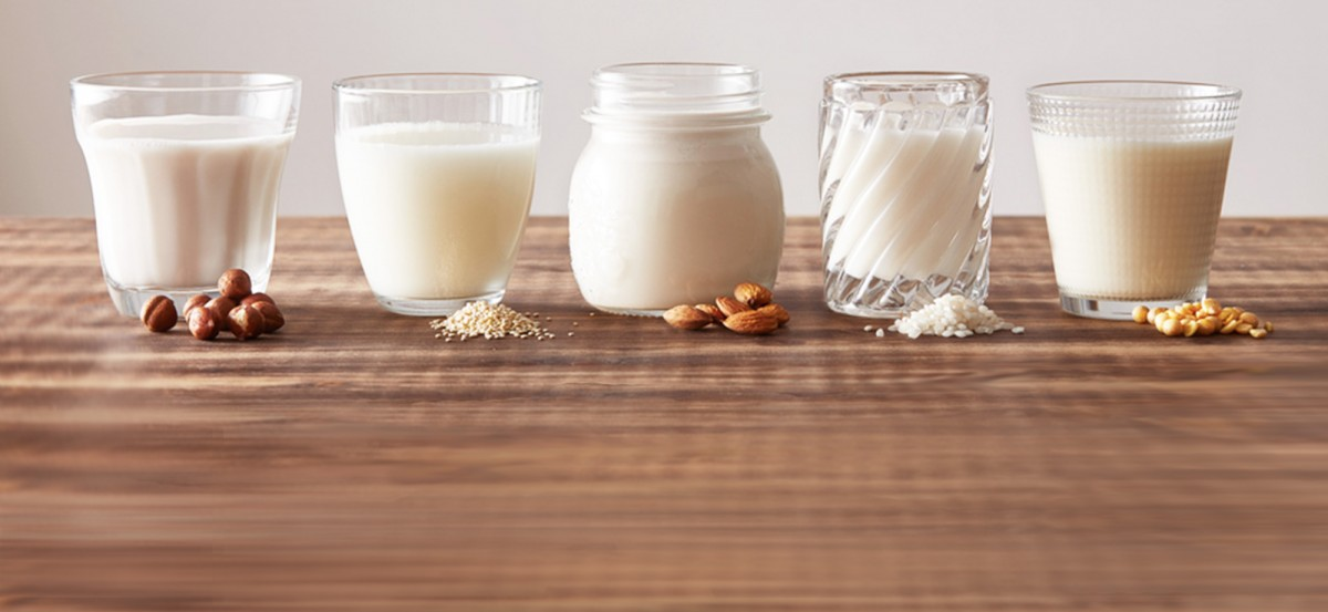 Plant Milks 101: A Guide to Dairy Alternatives